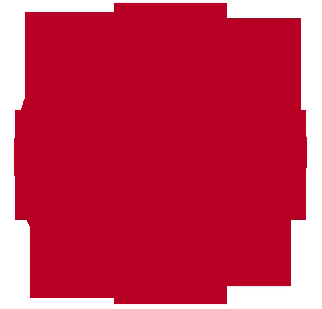zsashirt13rood
